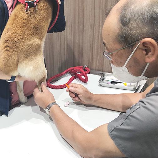 入居者専用動物診察室