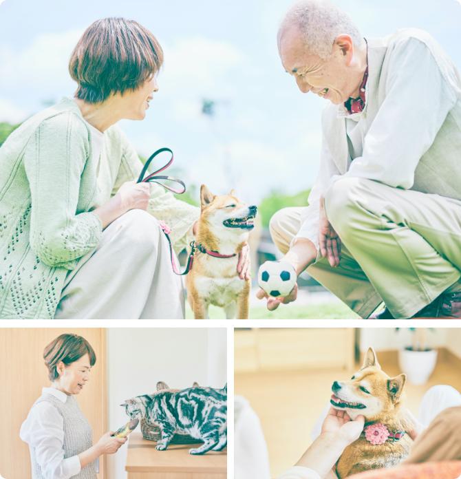 ここは、人も動物も最期まで一緒に暮らせる住宅型有料老人ホーム